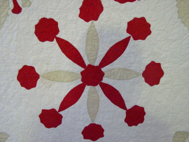 shows quilting pattern