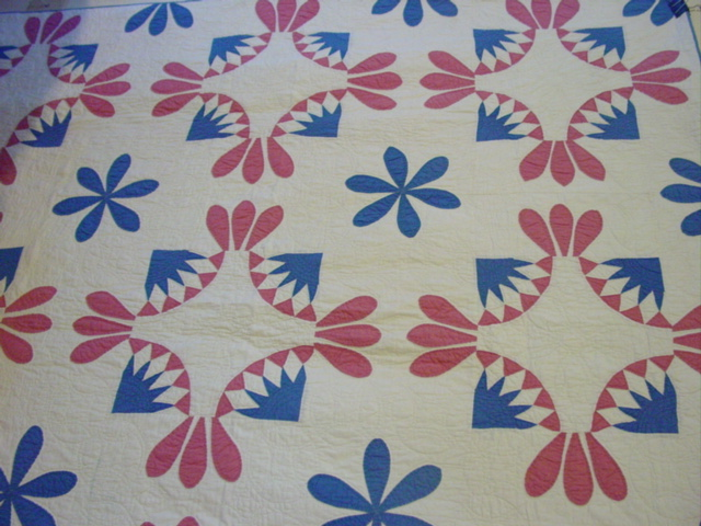 great pattern- colors of blue and pink/rose