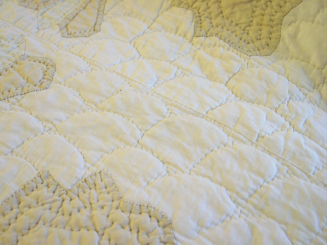 the clamshell quilting