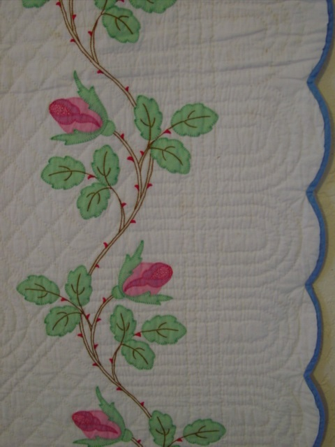 showing the border and vine and colors and quilting